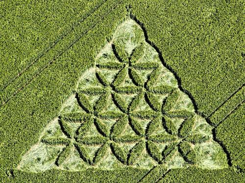 Crop circles et extraterrestres