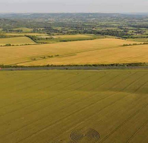 Crop circles Angleterre