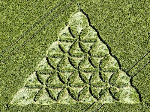 Crop circles et leurs messages