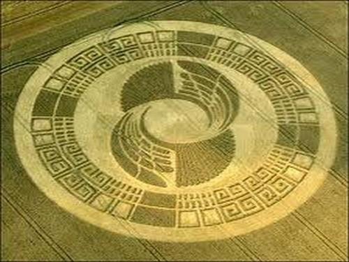 Secret crop circles